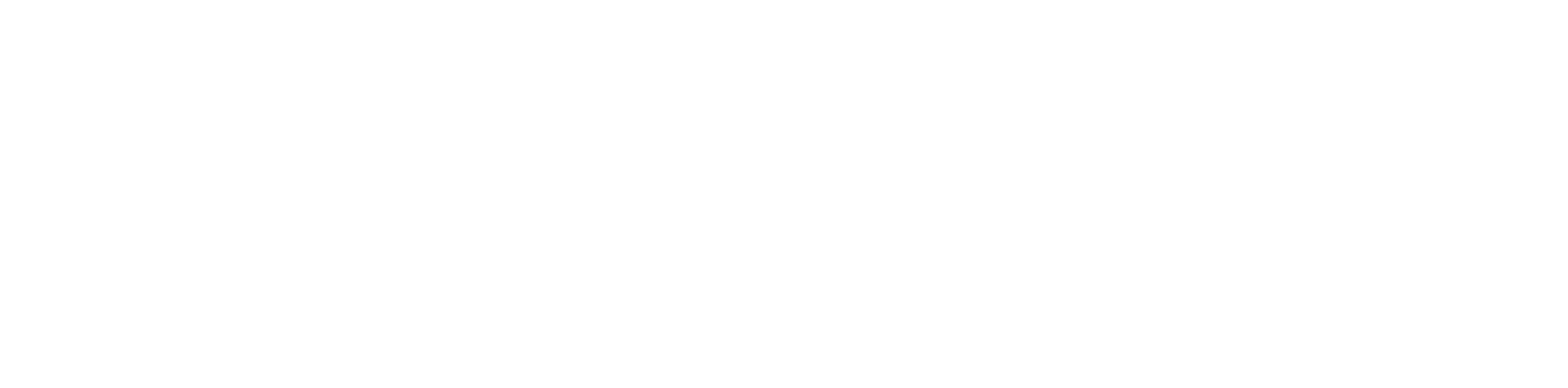 Digital Blue Beagle Logo